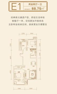 E1户型88平两室