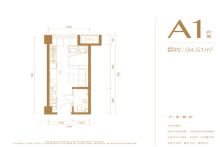 公寓A1户型