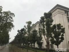 600平/800平/1000平新春特惠 1室 1厅 1卫